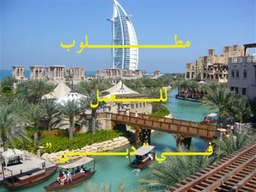 ... وظائف الإمارات وسوق العمل دبي captura de pantalla de la apk ...