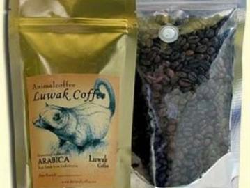 أغلى قهوة في العالم مصنوعه من روث حيوان نادر موقع عربي أمريكي